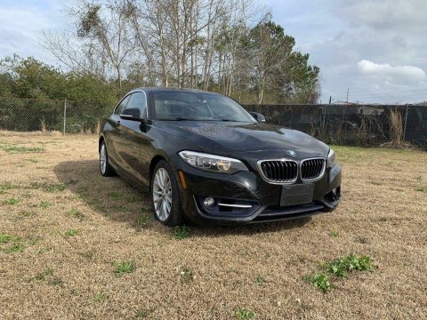 easy fix 2016 BMW 2 Series repairable for sale